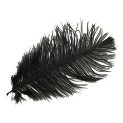 Dekorative Federn 30cm - 10Stk