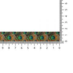Satinband Pfauenfeder 15mm - 20m