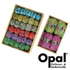 Opal Regenwald Sortiment 5x100g - 8 Farben - 1Stk