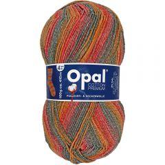 Opal Cotton Premium 2020 4-fach 8x100g