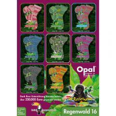 Opal Regenwald 16 Sortiment 5x100g - 8 Farben - 1Stk